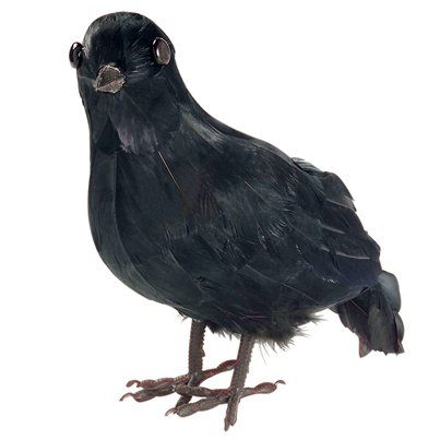 Feathered Crow - 27cm
