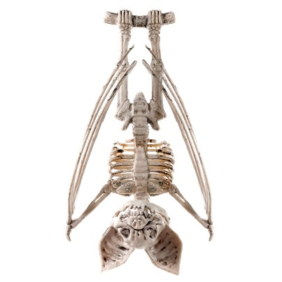 Skeleton Hanging Bat - 29cm